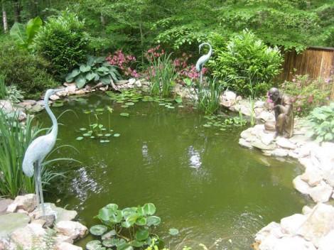 Manassas VA Landscape Design