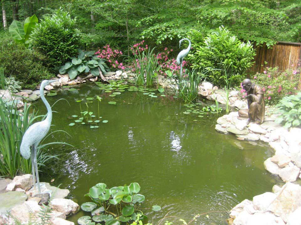 Landscape design northern virginia sliverbrook nursery for Landscaping rocks northern virginia