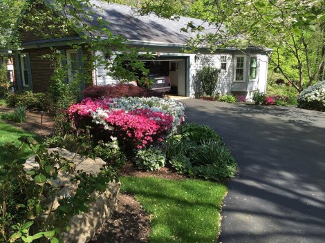 Springfield Landscape Services