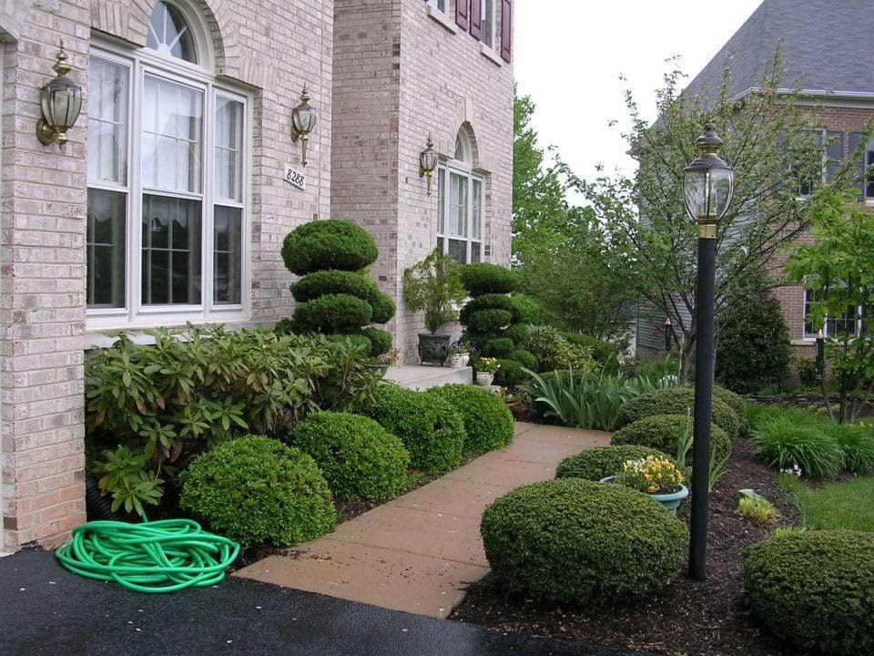 Arlington Lawn Mowing Service