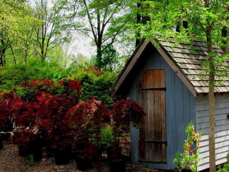 Ashburn VA Garden Center