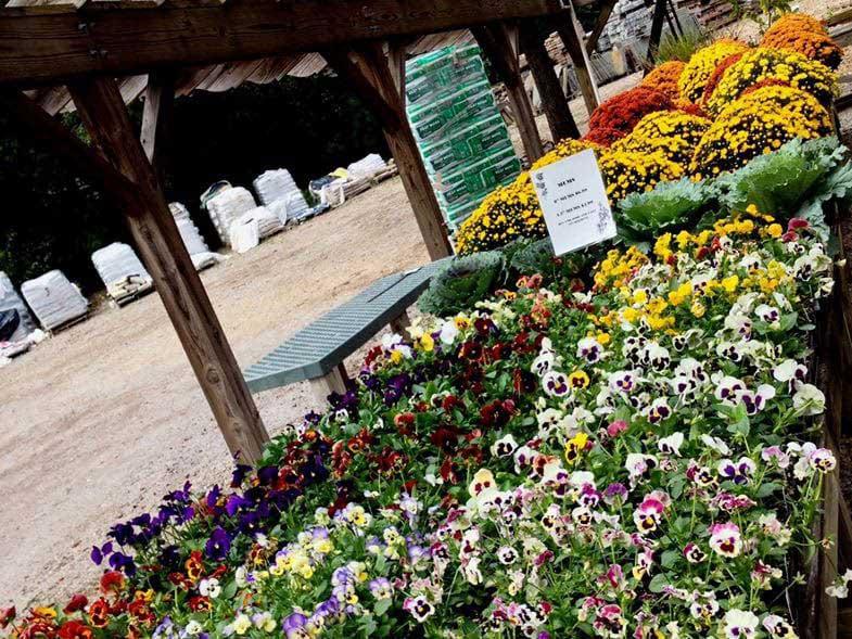 Chantilly Garden Center