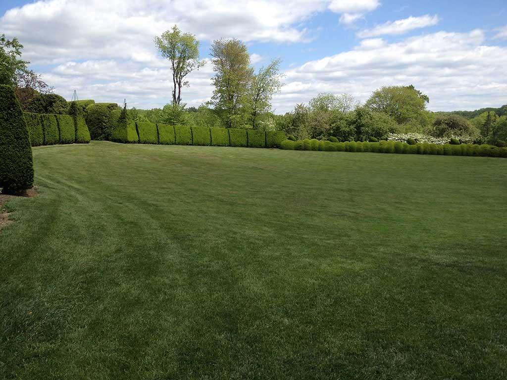 Landscaping Clifton VA