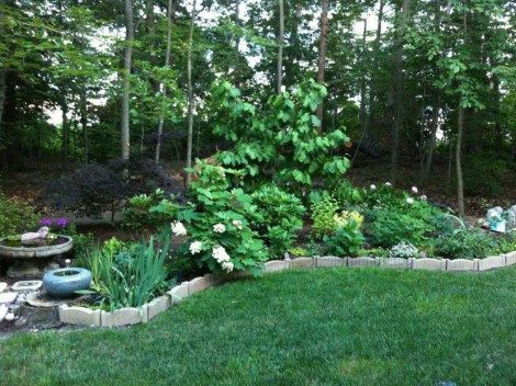 Landscape Design Clifton VA