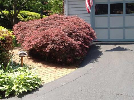 Landscape Design Lorton VA