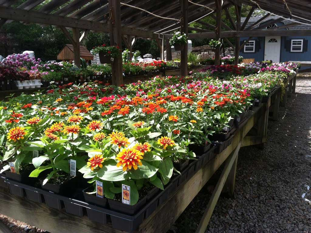 Garden Center Northern Virginia Lorton Nursery Sliverbrook Nursery